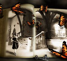Journal of a Butterfly Catcher by dimarie