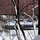 Jericho Covered Bridge Snow Scene by Hope Ledebur