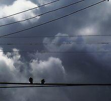 Storm Watchers by RobertCharles