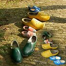 Clogs by Ann Persse