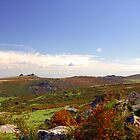 Dartmoor Tor by David-J