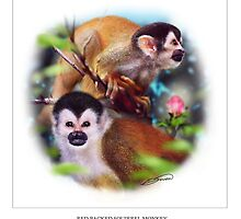 RED-BACKED SQUIRREL MONKEY 3 by DilettantO