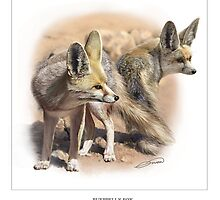 RUEPPELL'S FOX 2 by DilettantO