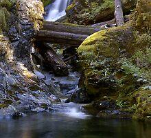 Gold Creek #1 by Allan  Erickson