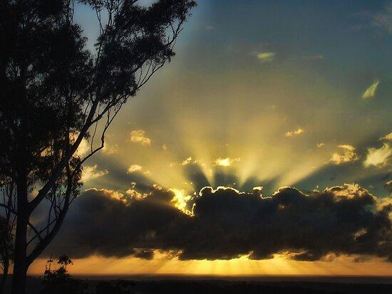 "'Morning Aura"" by debsphotos"