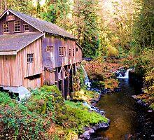 Cedar Creek Grist Mill by Heather Parsons