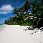 The Beach at Eneko Island, Majuro Atoll by Skye Hohmann