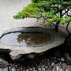 Stone Basin Zen by Skye Hohmann