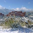 Garden of the Gods under fresh snow by Bob Spath