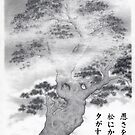 Pine in the mist haiku by Wieslaw Borkowski