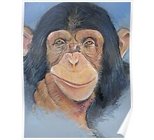 Cheeky chappy chimp Poster