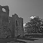 Tiny, Yet Glorious Etal Castle by Ryan Davison Crisp