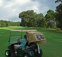 Number 5 Alpine Bay Golf Club Alpine, Alabama by Mike Pesseackey (crimsontideguy)