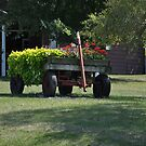 Trailer planter by mltrue
