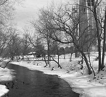 Snowy River by Ryan Smith