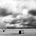 Saskatchewan Prairies B&W by Mindy McGregor