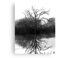 """Blackstone Tree"" B@W Canvas Print"