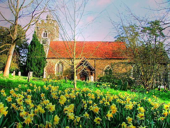Spring is Here - Oxfordshire by Colin J Williams Photography