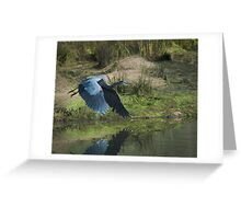 Great Blue Heron In The Salt Marsh Greeting Card