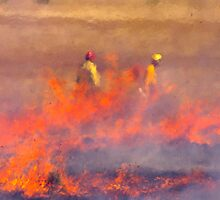 Grass Fire by Allan  Erickson