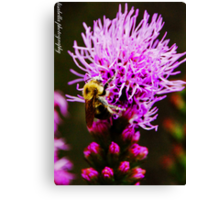 if i were a flower growing wild and free, all i'd want is you to be my sweet honey bee Canvas Print