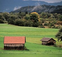 Two Barns - Hechendorf, Germany by Eric Cook