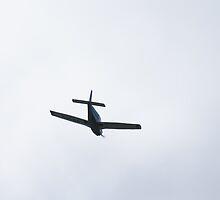 plane by Emily  Redfern