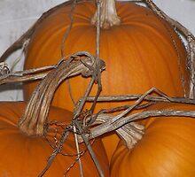 Orange Pumpkins by Jonice