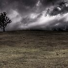 Lone Tree by James Cole