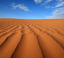 Sand Dune Ripples, Simpson Desert, Australia by David Jamrozik