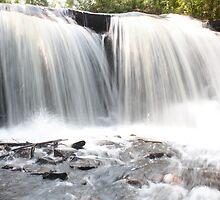 Raleigh Falls Closer by Teresa Zieba
