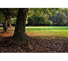 Heidelberg in Autumn, Germany Photographic Print