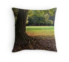 Heidelberg in Autumn, Germany Throw Pillow
