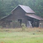 Barn 1 - Wayne County, GA by oldgoatsphoto