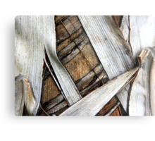 Palm Bark Series 2 Metal Print
