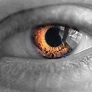 Eyes on Fire by Joel Hall