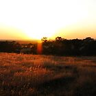 Panorama Chico Sunset by debsdesigns