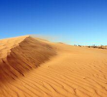 Windy Dune by vwtiguan