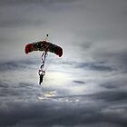 """""""Skydiver"""" by Dyle Warren"""