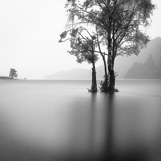 Ullswater Birch by JulianJ