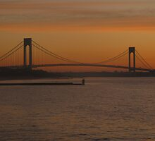 verrazano narrows bridge by marianne troia