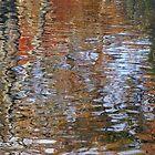 Autumn ripples 2 by Kirstyshots