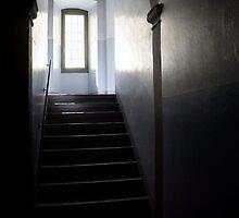 climb to the light by Cornelia Togea