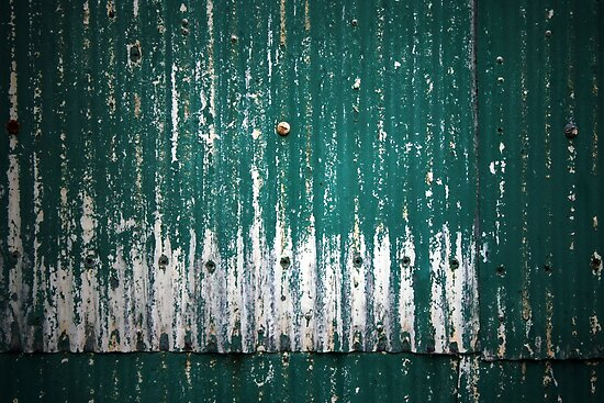 Behind the Old Shed by Stephen Mitchell