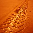 Making Tracks/ The Dust Storm by Julienne  Bowser