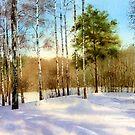 Winter forest by Sergei Kurbatov