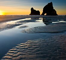 Wharariki Beach by ianwoolcock