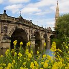 The English Bridge, Shrewsbury, UK by Michael Hadfield