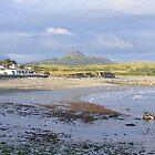 Criccieth beach by Ian Richardson