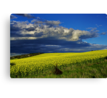 """The Yield"" Canvas Print"